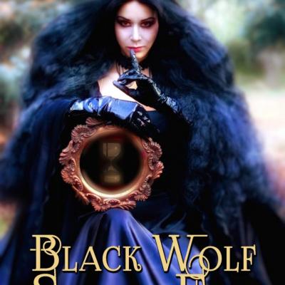 Black Wolf, Silver Fox – K. J. Joyner paperback