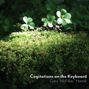 """Cogitations on the Keyboard – Gary """"Mofilker"""" Hanak Filk Instrumental CD"""