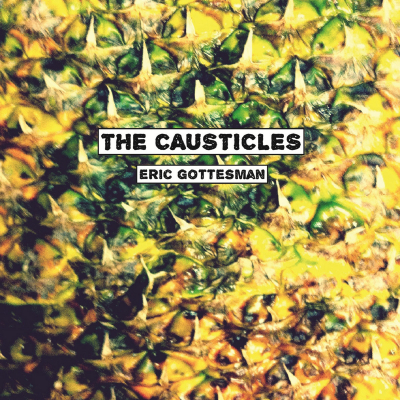 The Causticles – Eric Gottesman (Industrial)